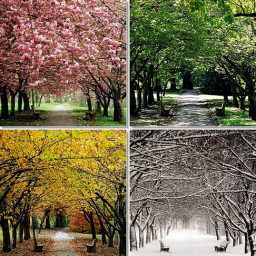 seasons change, and so do we